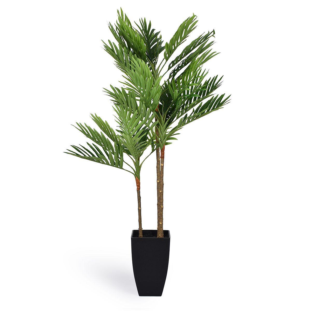 Декоративное дерево Филодендрона Изящного в горшке