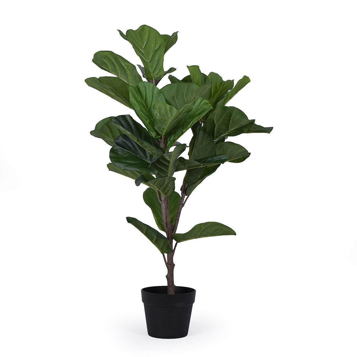 Декоративное дерево Фикуса Лировидного в горшке