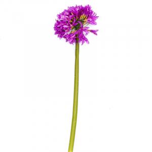Декор Африканская лилия