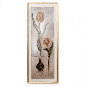 Набор 2-х репродукции картин Tulipa Violoncello VI, Joseph Augustine