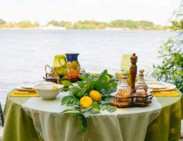 Сервировка для пикника в саду «Лимонное дерево»
