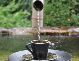 Чашка с блюдцем для кофе чёрно-зелёная Riviera